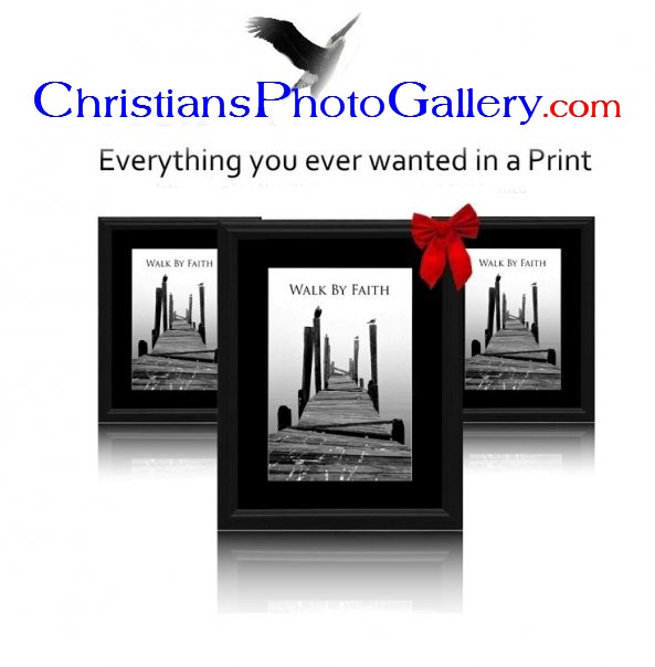 Welcome to Christian's Photo Gallery