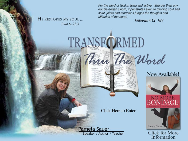 Introducing Transformed Throught The Word - Pamela Sauer: Speaker / Author/ Teacher